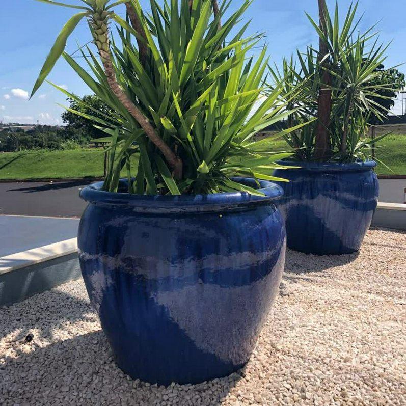 Vaso Vietnamita Tree com Bordas Azul