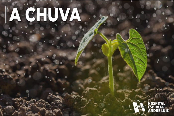 SER CHUVA
